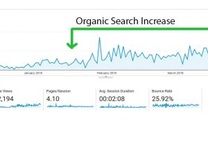 The experience of getting results for a new website is priceless